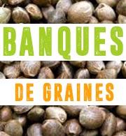 Banques de graines
