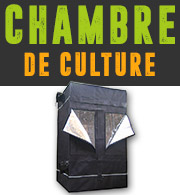 Chambres de culture Cannabis