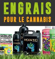 Les Engrais pour Le Cannabis