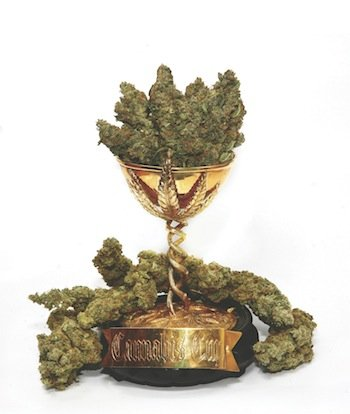 Graines Cannabis Cup