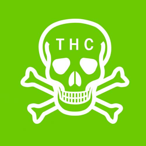 Graines Fort taux de THC
