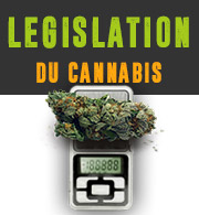 Legislation du Cannabis