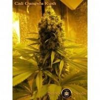 Cali Gangsta Kush