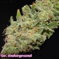 Soul Star Dr Underground