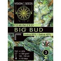 Graines de Big Bud