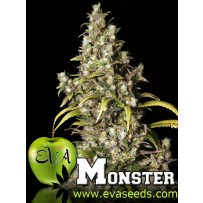 Monster Eva Seeds