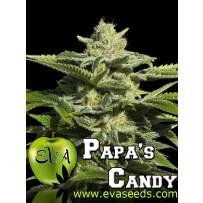 Papas candy Eva seeds