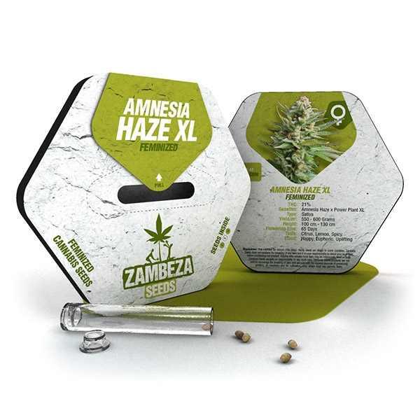 Graines de Amnesia Haze