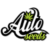 Graines Auto Seeds
