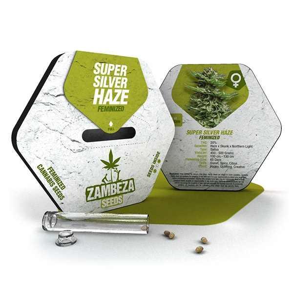 Graines de Super Silver Haze