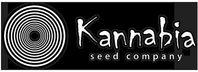 Graines Kannabia